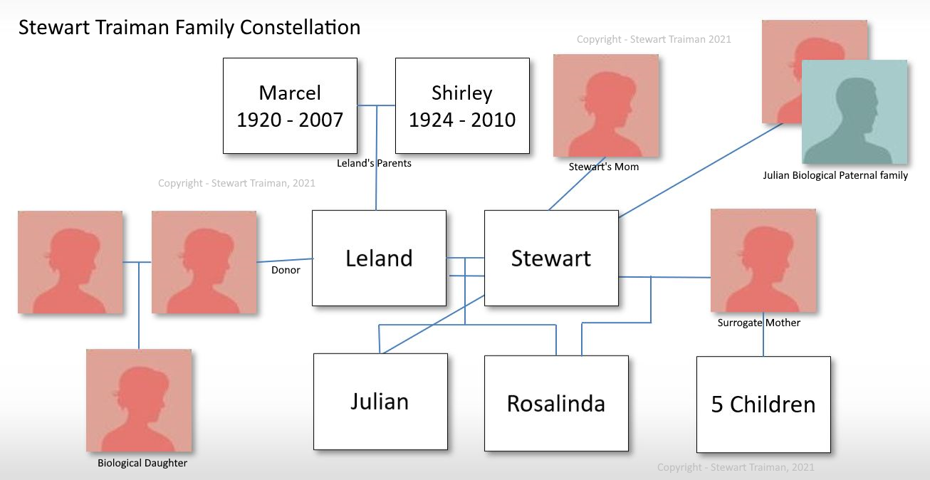 Stewart Traiman Family Constellation